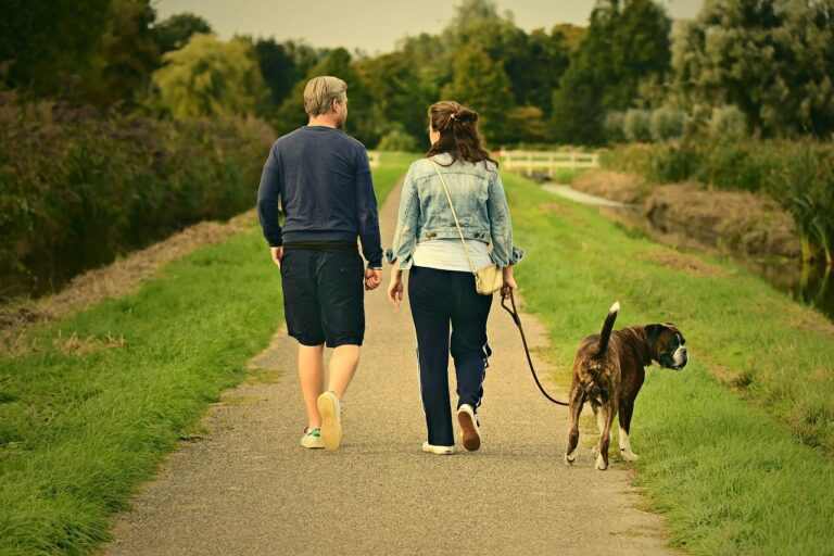 Couple walking in the park with dog